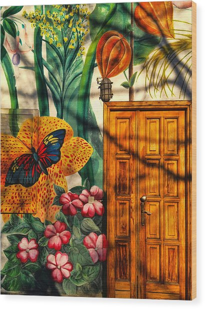 Damanhur Door Wood Print