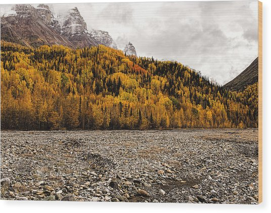 Wood Print featuring the photograph Dan Creek Color by Fred Denner