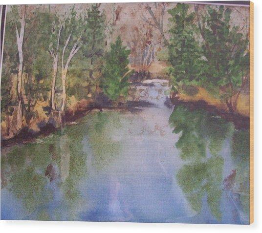 Dan S Pond Wood Print