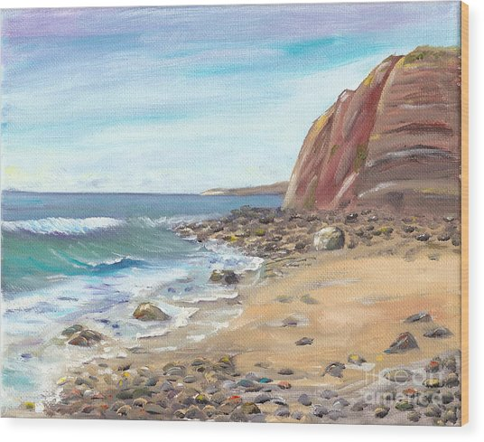 Dana Point Beach Wood Print