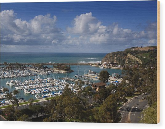 Dana Point Harbor California Wood Print