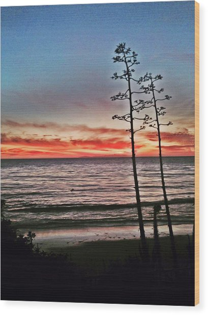 Dana Point Sunset Wood Print