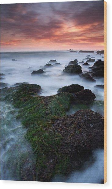 Dana Point Sunset Wood Print by Eric Foltz