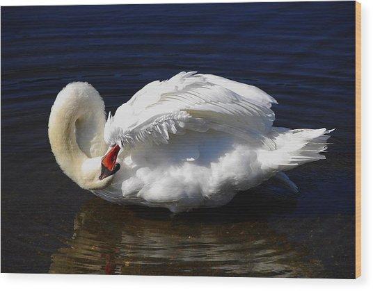 Dance Of The Swan Wood Print