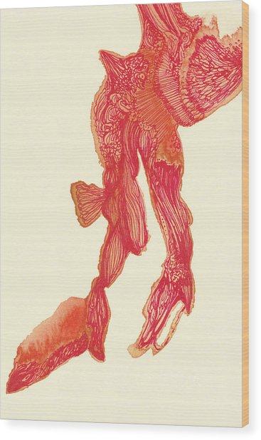 Dancer - #ss14dw041 Wood Print by Satomi Sugimoto