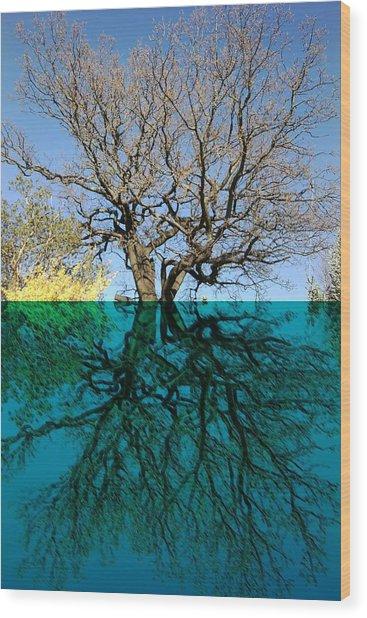 Dancers Tree Reflection  Wood Print
