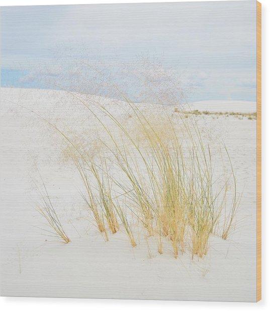 Dancing Grass Wood Print