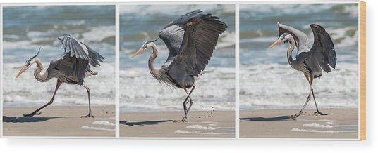 Dancing Heron Triptych Wood Print