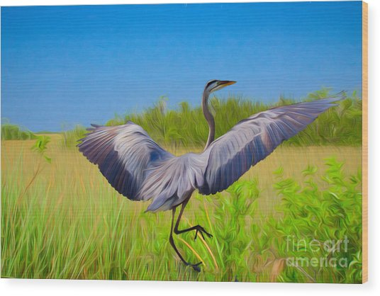 Dancing In The Glades Wood Print