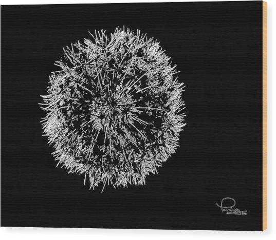 Dandelion 2 Wood Print