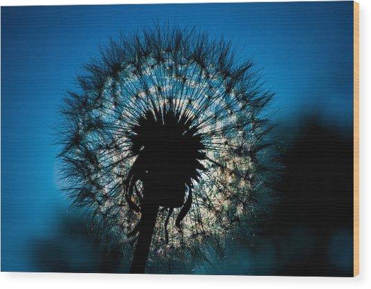 Dandelion Dream Wood Print