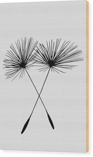 Dandelion Duo  Wood Print