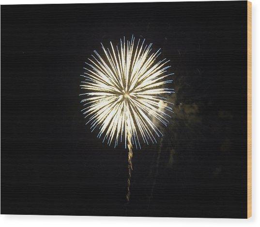 Dandelion Life Wood Print