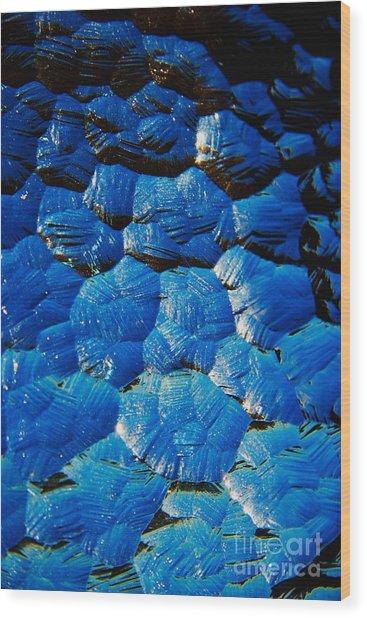 Dark Blue Wood Print by Hideaki Sakurai