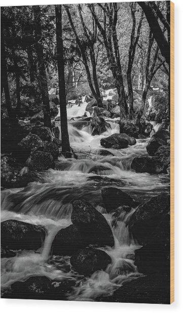 Dark Forest Bright Water Wood Print