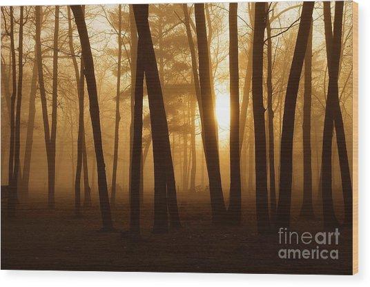 Dark Forest Wood Print