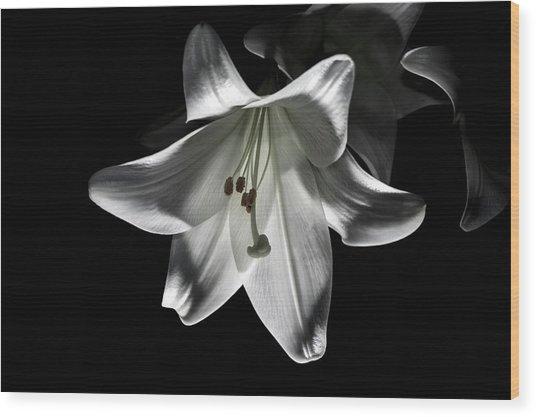 Dark Lilly Wood Print