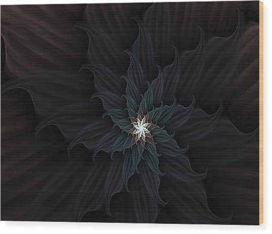 Dark Star Flower Wood Print