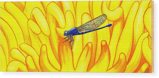 Darning Needle Wood Print by Catherine G McElroy
