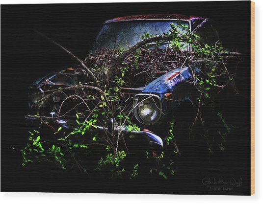 Datsun Treehouse Wood Print