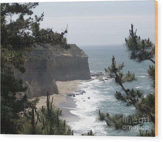Davenport Beach Wood Print