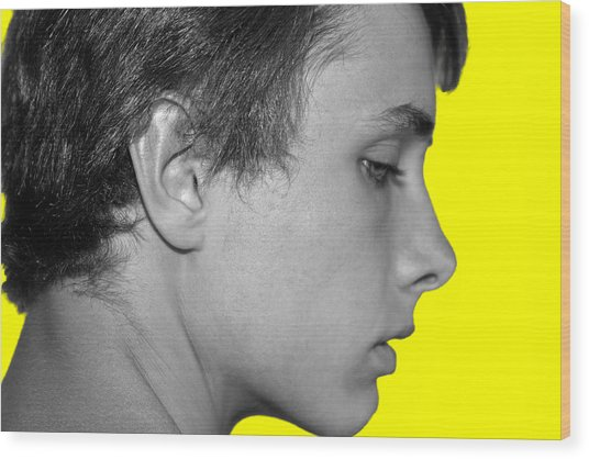 David R On Yellow Wood Print