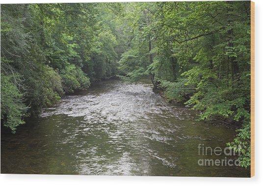 Davidson River In North Carolina Wood Print