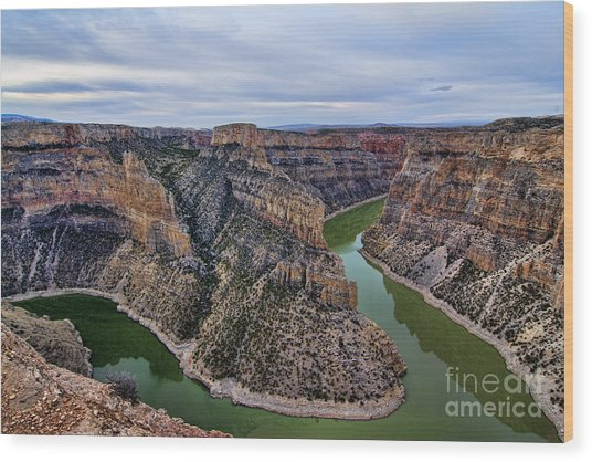 Dawn At Devils Overlook Bighorn Canyon Wood Print