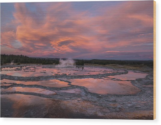 Dawn At Great Fountain Geyser Wood Print