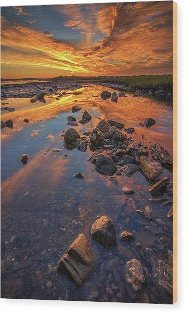 Dawn At Pott's Point Wood Print