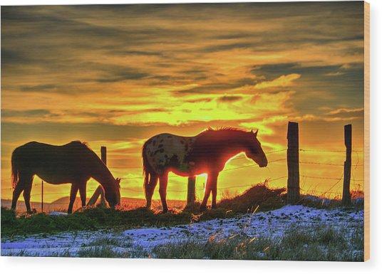 Dawn Horses Wood Print
