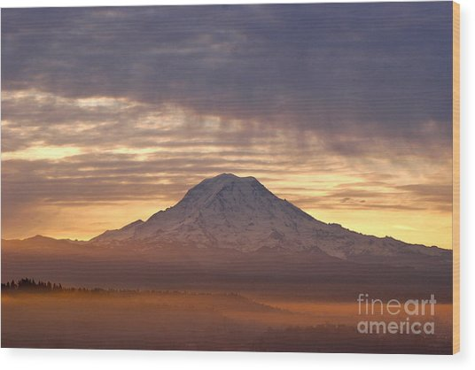Dawn Mist About Mount Rainier Wood Print