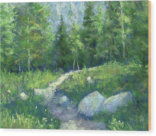 Day Hike Wood Print