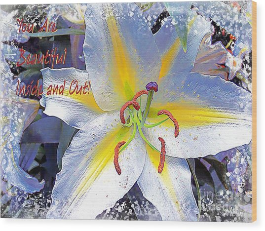 Day Lily Beauty Wood Print