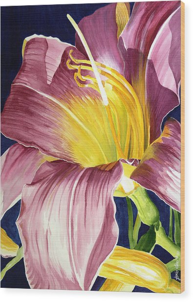 Day Lily In Sunlight Wood Print by Janis Grau