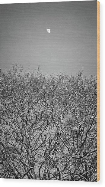 Daylight Moon Gazing Wood Print