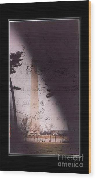 Dc Grunge  Wood Print by Lynn Gettman