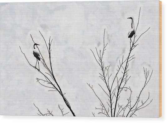 Dead Creek Cranes Wood Print