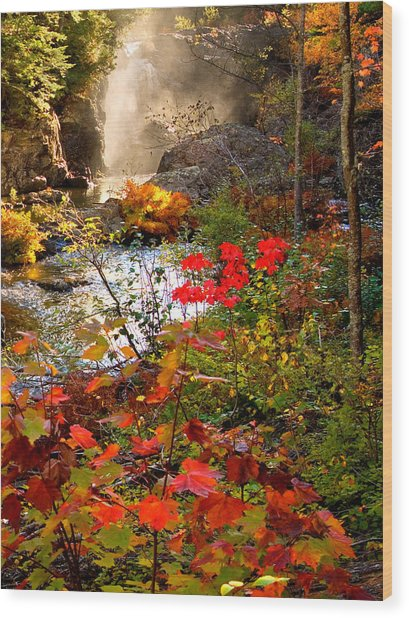Dead River Falls Foreground Plus Mist 2509 Wood Print