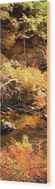2 Of 6 Dead River Falls  Marquette Michigan Section Wood Print