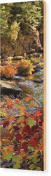 4 Of 6 Dead River Falls  Marquette Michigan Section Wood Print