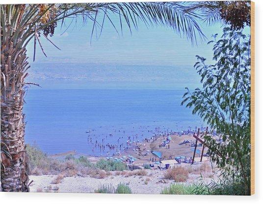 Dead Sea Overlook 2 Wood Print