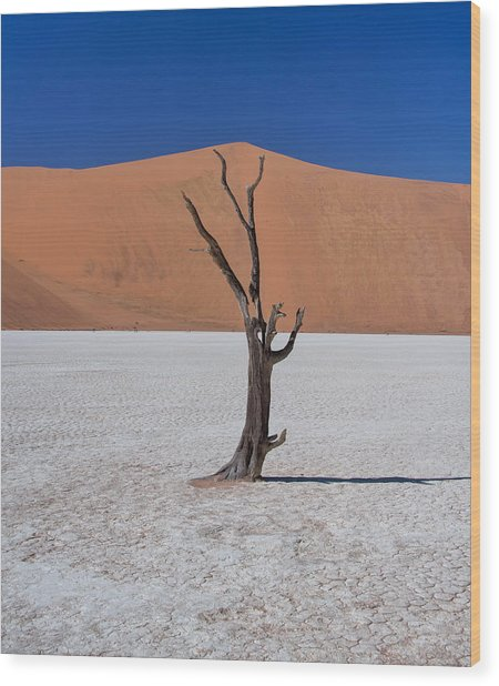 Wood Print featuring the photograph Dead Vlei Solo by Rand