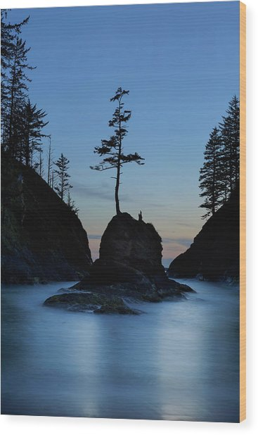 Deadman's Cove At Cape Disappointment At Twilight Wood Print