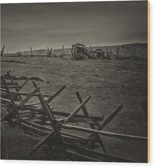 Death At Antietam Wood Print
