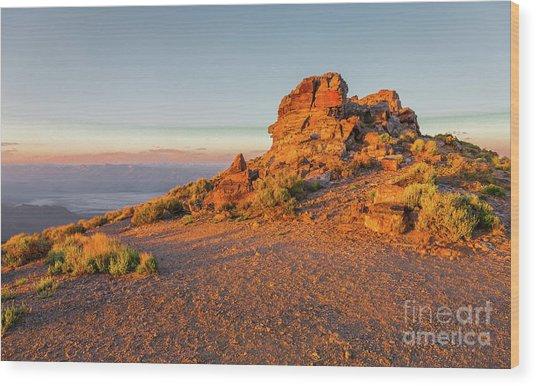 Death Valley 2 Wood Print