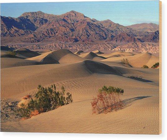 Death Valley Dunes Wood Print by Tom Kidd