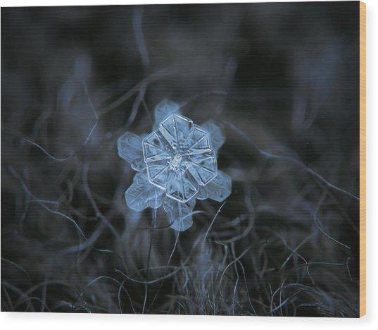 December 18 2015 - Snowflake 2 Wood Print