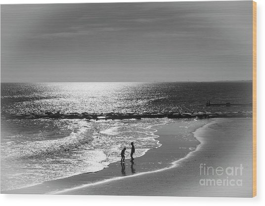 December At The Jersey Shore Wood Print