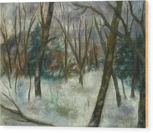 December On Cooper Hill Wood Print